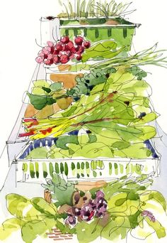 Greenhouse greens...  The Sketchbook by Shari Blaukopf...checkout the blog