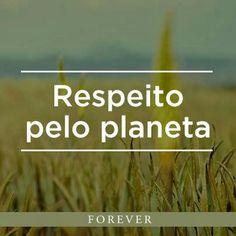 Produtos Forever: Existem 50 milhões de plantas Aloe Vera crescendo ...