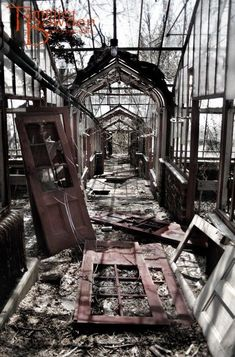 Abandoned Greenhouse  Original Photograph by TammieBowdenPhoto, $28.00