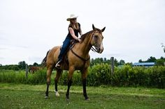 """Study Confirms Horses Respond to Negative Reinforcement Negative reinforcement relies on the use of pressure and timely release of pressure to train horses. It's only called """"negative"""" in a mathematical sense because something (pressure) is taken away during the training process to reward the horse for a correct behavioral response."""