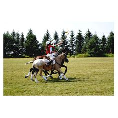 Me playing Polocrosse on my horse Popcorn in Minnesota!! If you look closely at my racquet...oops