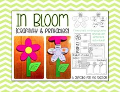 In Bloom {Craftivity & Printables} Supplement your plant unit with this fun craftivity pack! Your kiddos will create a pretty little flower, complete with your choice of five writing prompts. They will also have a blast working on the included activities! 1st Grade Science, Kindergarten Science, Elementary Science, Science Classroom, Teaching Science, Science For Kids, Science Activities, Classroom Activities, Science Guy