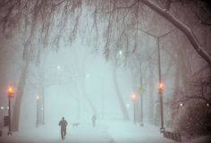 Blizzard Jonas Pummels Eastern United States In A Once In A Generation Storm