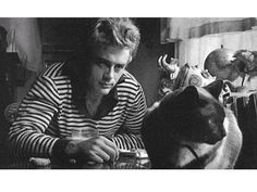 Pictures of James Dean Body   James Dean : So You Died In a Car Wreck? Big Deal