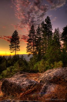"Yosemite National Park ~ ""Sunset on the Ridge"" Photo: MDSimages.com"