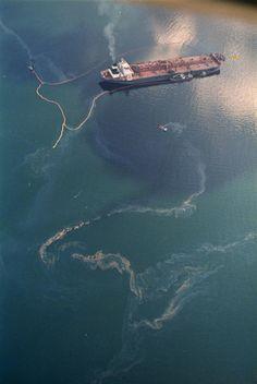Exxon Valdez Oil Spill Catastrophe