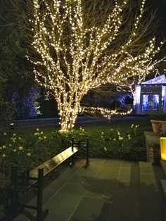 Wonderful outdoor lighting