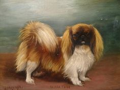 1926 Pekingese Dog Portrait Antique Oil Painting Henry CROWTHER