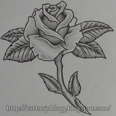 1000 images about draw roses on pinterest how to draw for Easy rose drawing tutorial