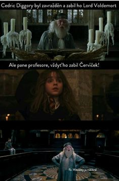 Harry Potter Texts, Harry Potter Jokes, Harry Potter World, Harry Potter Hogwarts, Bonnie Wright, Dramione, Vampires, Funny Pictures, Funny Memes