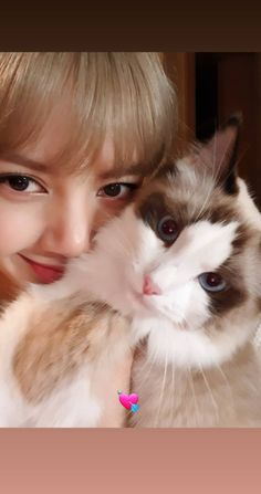 Discovered by BLACKPINK PICS. Find images and videos about cat, blackpink and lisa on We Heart It - the app to get lost in what you love. Jennie Lisa, Blackpink Lisa, Lisa Blackpink Wallpaper, Blackpink Video, Cute Wallets, Blackpink And Bts, Blackpink Photos, Blackpink Fashion, Fashion Outfits
