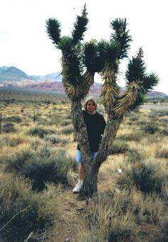 Under a Joshua Tree in the Nevada desert