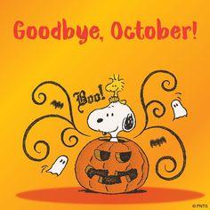 Goodbye October!                                                                                                                                                                                 More