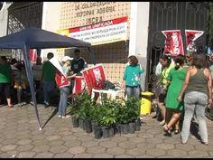 Servidores do INCRA estão em greve e fazem manifestação ecológica