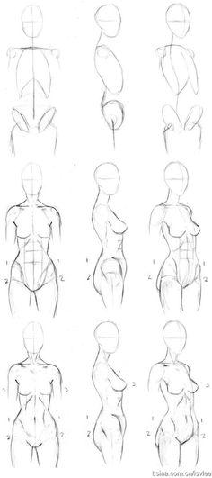 绘画教程✍(՞ټ՞✌)人体、素描、身体结构