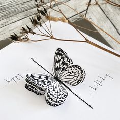 Bee Designs black and white 3D butterfly greeting card. Paper butterflies stitched onto a pure white card. www.beedesigns.co.uk Paper Butterflies, Butterfly Cards, Pure White, Black And White, Butterfly Stitches, Bee Design, Product Photography, Greeting Cards, Pure Products