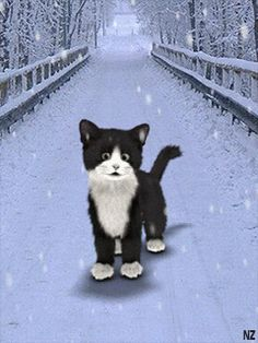 ❄️ SWEET AND CUTE KITTY, WINTER SNOW GIF ❄️