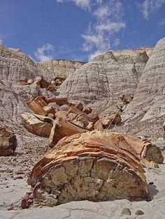 ⚒ Petrified Forest National Park, Arizona |#Geology  *Photo : © panoramio  visit : http://www.geologyin.com/