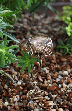 "SPRAY PAINT GOLD  Fairy Garden Tools - Make a ""bird bath"" out of an acorn cap for your fairies."