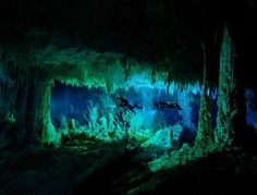 Too perfect example of a realm we need. Landscape shape, blue, green, and plenty of space across foreground horizontally to customize with decor. Glowy luminescent decor in whites, blues, and yellows would look unbelievable. Stalactite/stalagmite cave a fresh idea for a darker realm too.