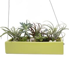 Ragna - Hanging Planter Chartreuse