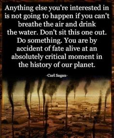 "Carl Sagan: ""You are by accident of fate alive at an absolutely critical moment in the history of our planet. Save Mother Earth, Save Our Earth, Our Planet, Save The Planet, Planet Earth, We Are The World, In This World, Carl Sagan, Environmental Issues"