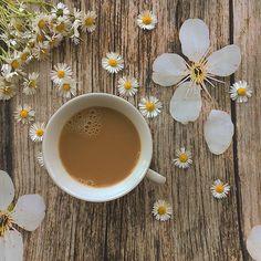 http://www.e-coffee.dxn.hu/