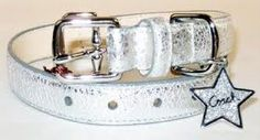 silver dog collars - Google Search