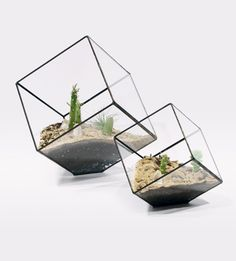 Terrariums / from Score + Solder. wow, I need one of these. via Anthology Magazine. #plants #geometry