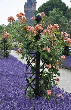soportes de enrejado 3d arbusto color de rosa