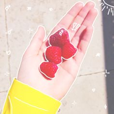 18 Ideas Photography Girl Alone Hands For 2019 Doodle On Photo, Tumblr Food, Photos Tumblr, Food Photography Styling, Instagram Story Ideas, Aesthetic Pictures, Beautiful Hands, Wattpad, Strawberry