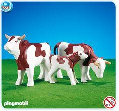 7079 Vacas marrones
