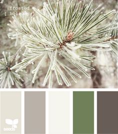 This website is so awesome for matching tones and colors! I've been wanting to paint my room and this has helped so much! This color combination is called frosted holiday and I think it's the winner :)