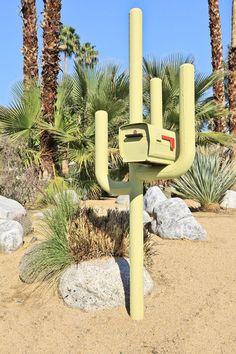 Cactus-Buzón