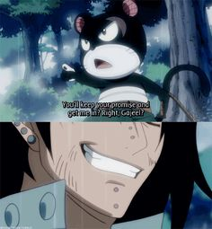 I knew Gajeel would finally find his flying kitty...bear thing...