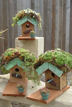 Living bird houses... so very cool!