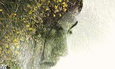 First Light review – a celebration of Alan Garner | Books | The Guardian