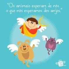 Anjos e animais