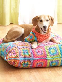 Crochet Projects for pets and furbabies. From pet beds to blankets. We also have crochet pet coats. Crochet Pillow, Crochet Granny, Dog Coat Pattern, Knitting Patterns, Crochet Patterns, Free Knitting, Knitting Supplies, Dog Sweaters, Crochet Home