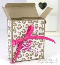 Stampin' Up! Demonstrator Pootles - Go Wild Box Tutorial using Stampin' Up! Paper Open