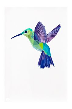 Hummingbird, Geometric illustration, Bird print, Original illustrations by tinykiwi prints