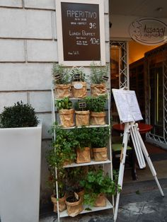 Restó en Roma Lunch Buffet, Container Gardening, Ladder Decor, Home Decor, Voyage, Rome, Pictures, Decoration Home, Room Decor