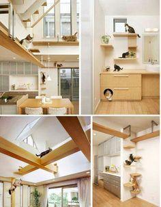 Cat-friendly home decor  5ffac68bc40f4101a3ee555cb537fe75.jpg (544×697)