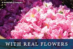 Shay & Blue fragrances are handcrafted with real flowers, fruits and spices.