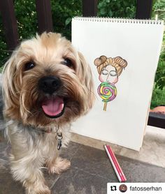 Whisky the dog & Candy Girl Illustration