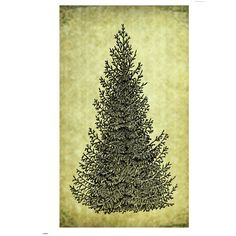 PINE TREE Rubber Stamp Cling Rustic Forest Evergreen Nature Illustration Mountain Christmas Spruce Large Trees Hiking Camping (50-05)