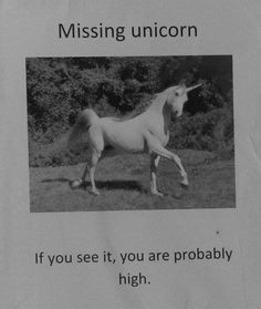 Michelle, i found your unicorn