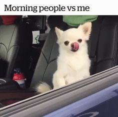Morning people vs me http://ift.tt/2wB9zxT
