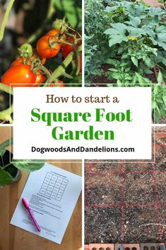 Would you like to grow a small garden but don't know where to start? The easiest way to grow a garden is to use the square foot gardening method. There are many benefits to growing a square foot garde Small Vegetable Gardens, Vegetable Garden Design, Small Garden Design, Garden Soil, Small Gardens, Garden Beds, Vegetable Gardening, Hill Garden, Vegetables Garden