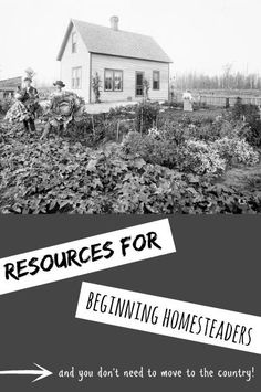 Homesteading For Beginners -- resources to get started with self-sufficiency. (And you don't need to move to the country in the process!) // neverhomemaker: